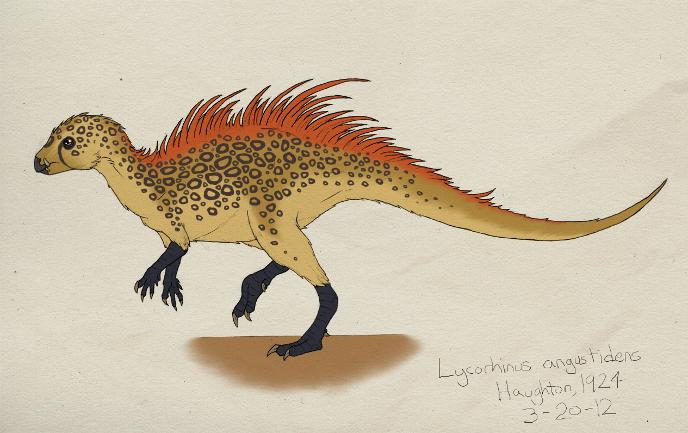lycorhinus-m (688x433, 502Kb)
