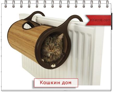 кошки интерьер