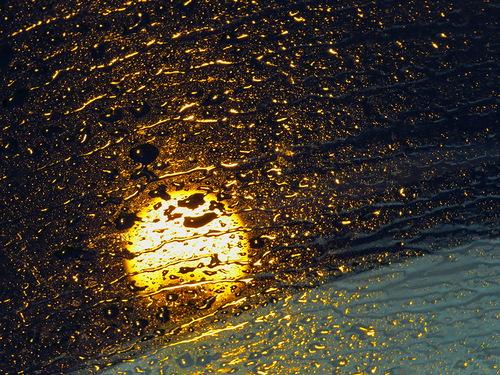 в дождливой паутине