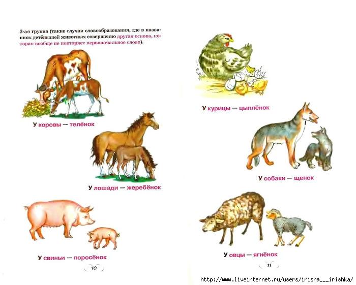фото названия детенышей домашних животных с картинками навыки рисования важны