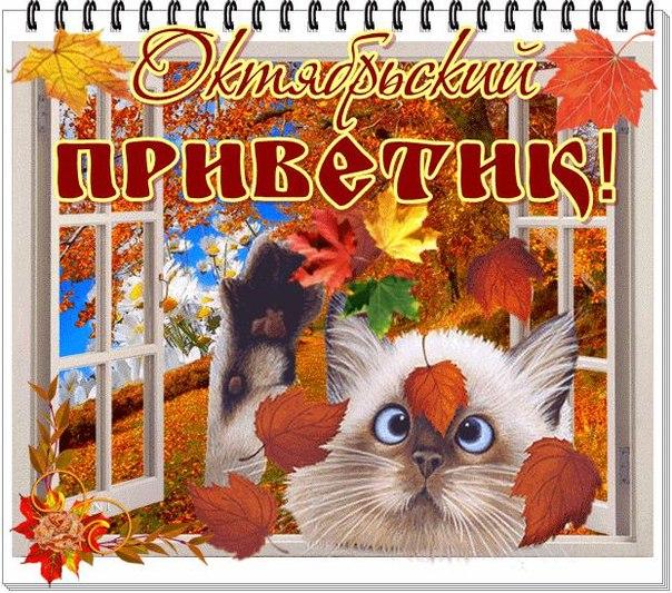 Картинки октябрьский приветик
