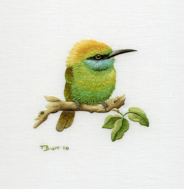 1308995416_green-bee-eater (610x627, 352Kb)