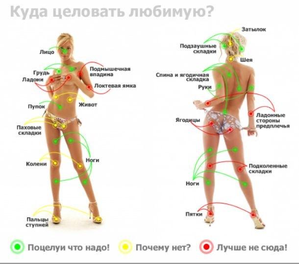 Эрогенные зоны женщин и как ласкать — pic 6
