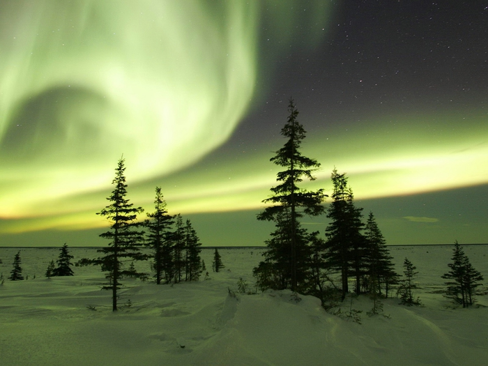 Image_0437.Manitoba.Churchill.The_Northern_Lights_in_Winter (700x525, 230Kb)