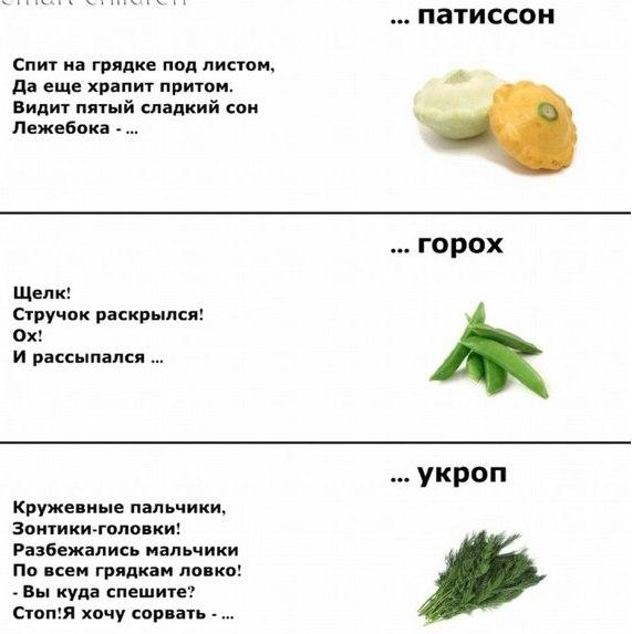 http://img0.liveinternet.ru/images/attach/c/9/107/520/107520846_large_1.jpg