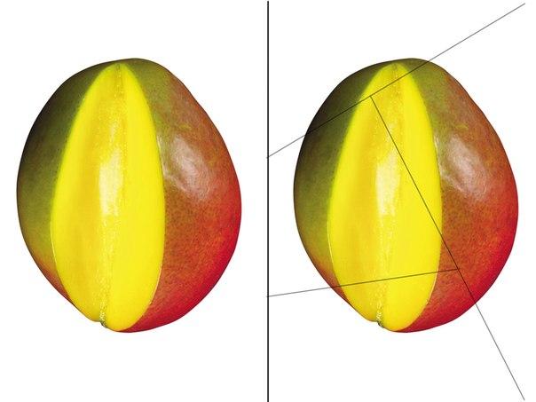 разрезные картинки на дереве фрукты тоскану круглый год