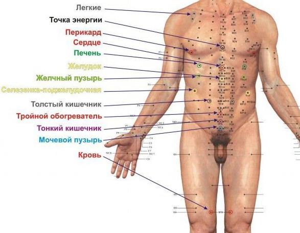 Болят мышцы ног выше колен спереди