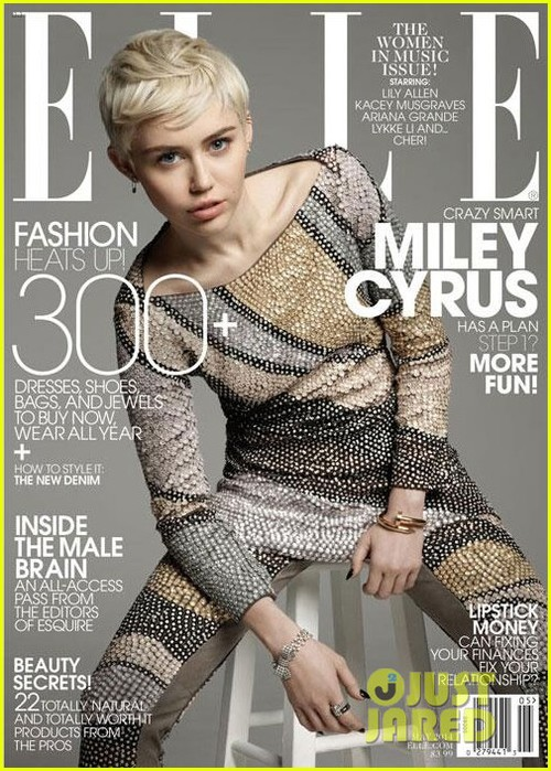 miley-cyrus-covers-elle-may-2014 (500x700, 133Kb)