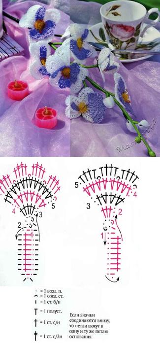 Цветы ОРХИДЕИ крючком. Схемы (6) (325x700, 209Kb)