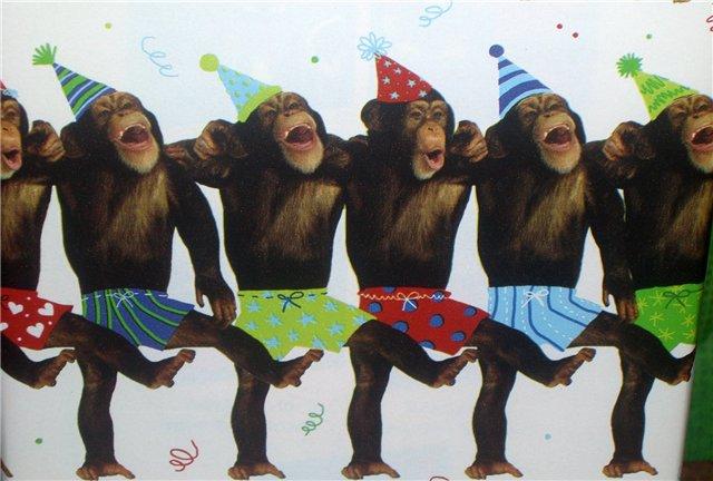 тех картинка обезьяны поют хэппи бездей запрещённая