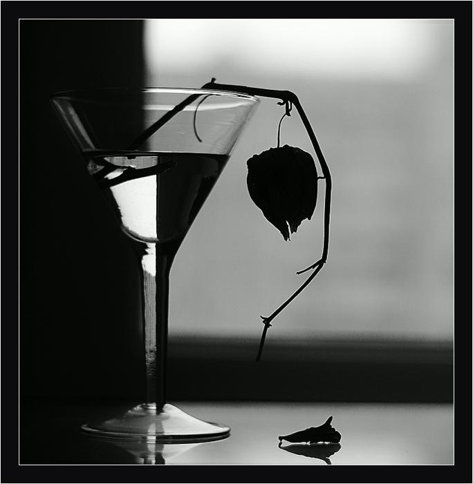фото черно белый натюрморт