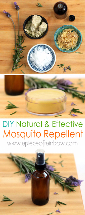 DIY-natural-mosquito-repellent-apieceofrainbow (276x700, 255Kb)
