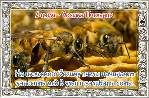 https://img0.liveinternet.ru/images/attach/d/0/136/126/136126106_6034576_0207.jpg