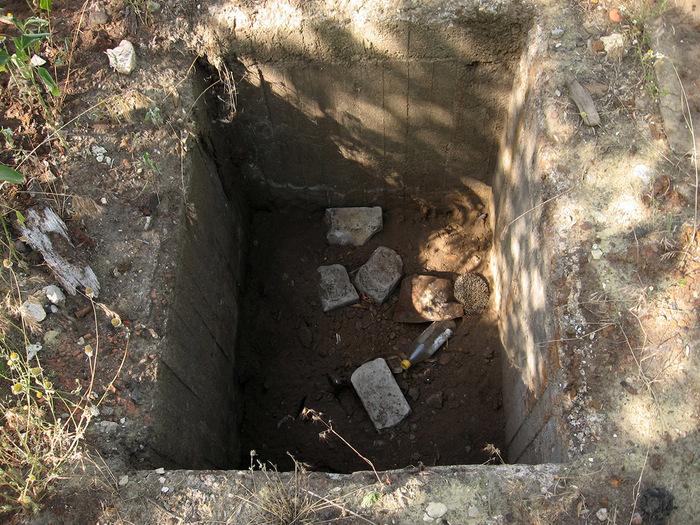 Как выглядят старые домовые ямы фото клетки
