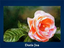 Doris Joa (200x150, 53Kb)/5107871_Doris_Joa (250x188, 87Kb)