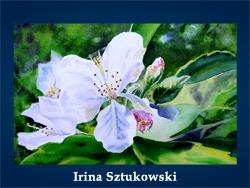 Irina Sztukowski (200x150, 49Kb)/5107871_Irina_Sztukowski (250x188, 95Kb)