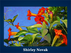 Shirley Novak (200x150, 78Kb)/5107871_Shirley_Novak (250x188, 100Kb)