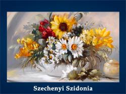 Szechenyi Szidonia (200x150, 66Kb)/5107871_Szechenyi_Szidonia (250x188, 88Kb)