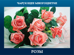 5107871_ROZI (250x188, 92Kb)