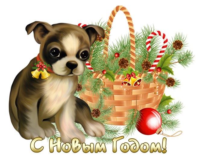 Новым, открытки 10 лет собаке