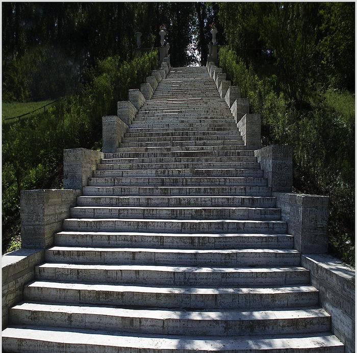 картинки лестница вверх и вниз одного