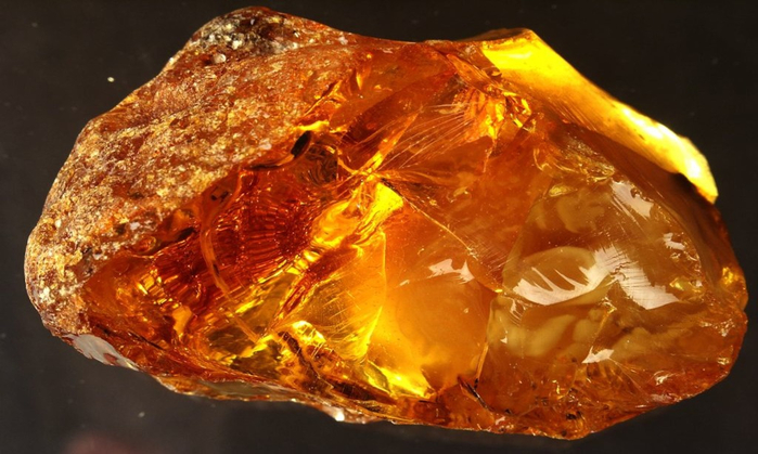 9 основных способов проверки подлинности янтаря. Обсуждение на ...