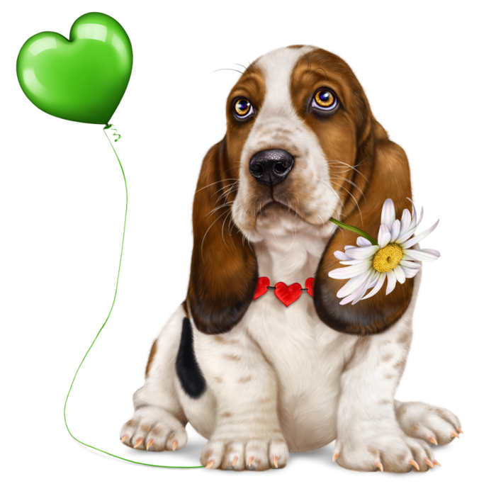 6314590_lonely_heart_basset_hound2 (700x700, 408Kb)
