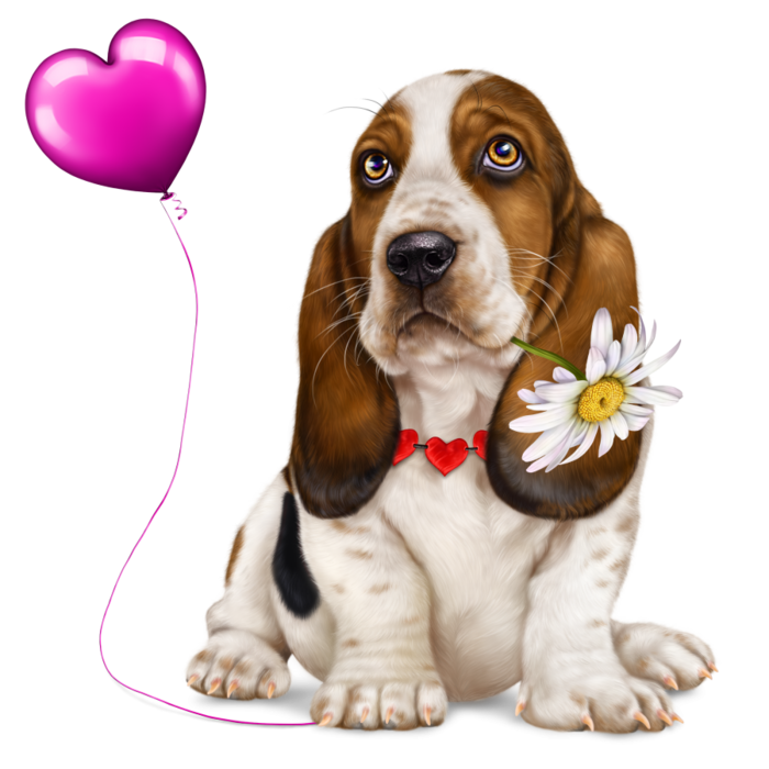 6314590_lonely_heart_basset_hound4 (700x700, 409Kb)