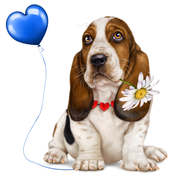 6314590_lonely_heart_basset_hound6 (700x700, 409Kb)