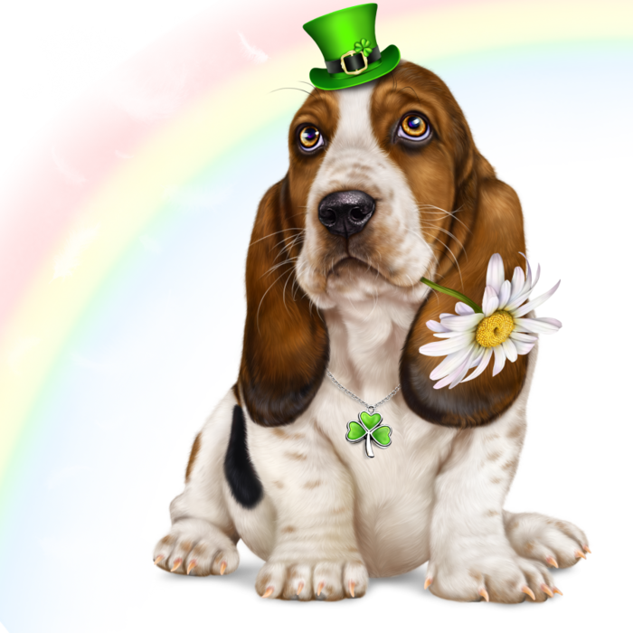 6314590_lonely_heart_basset_hound8 (700x700, 643Kb)