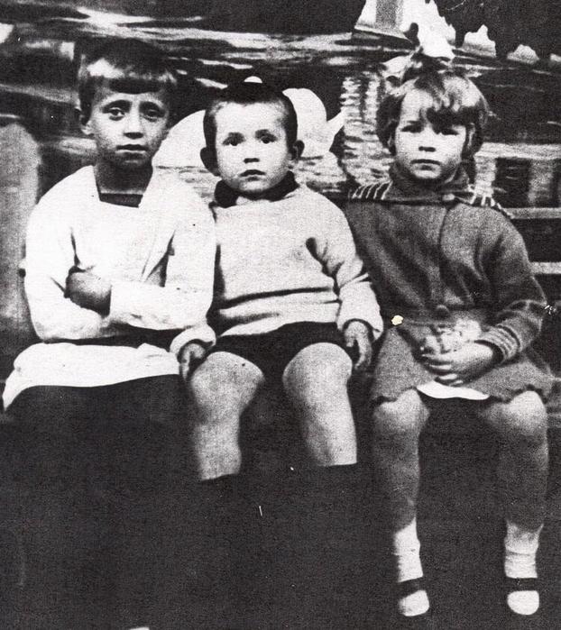 Фото бальмонта для детей 74
