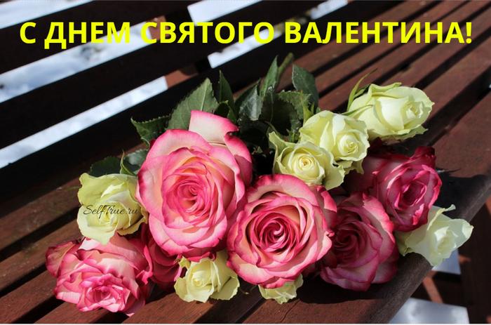 kartinki-s-dnem-vljublennyh-prikolnye-05 (700x463, 504Kb)