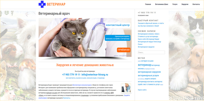 screen_site_veterinar-hirurg_01 (700x345, 255Kb)