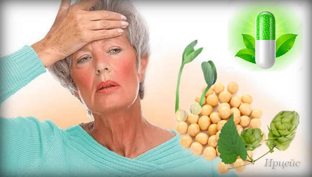 В каких продуктах содержатся женские гормоны эстрогены и фитоэстрогены