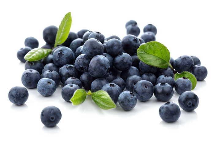 blueberry (700x466, 25Kb)