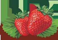 1231443945strawberry_l (200x140, 45Kb)