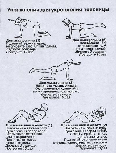 Гимнастика на укрепление мышц спины и позвоночника