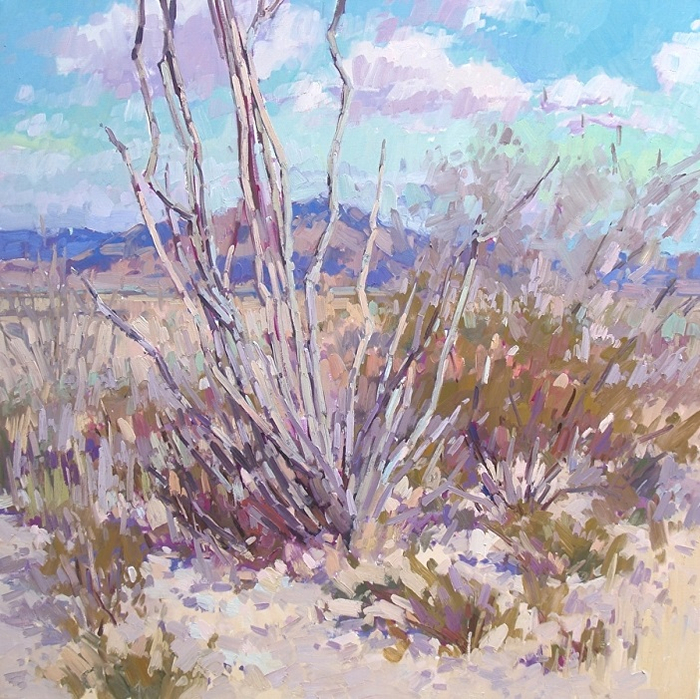 ocotillo-vista (700x699, 584Kb)