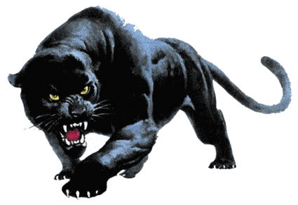 4843185_2__PantherPNG (425x292, 124Kb)