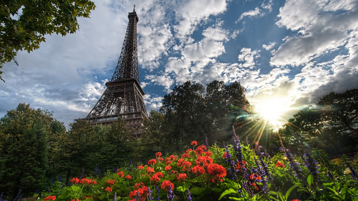 france-paris-flowers-summer (700x393, 369Kb)