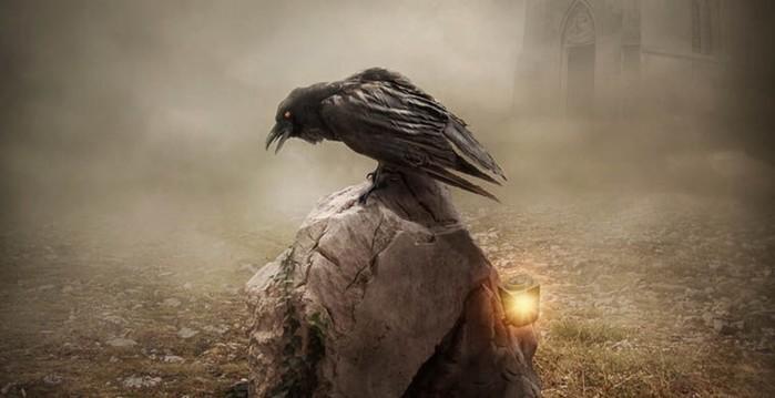 Несколько интересных фактов о воронах