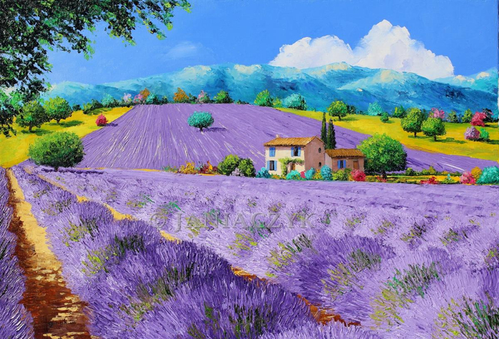 lavenders under sunshine janiaczyk_1 (700x476, 460Kb)