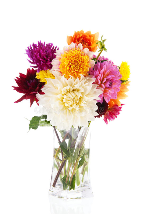 bouquet-dahlias-glass-vase-isolated-over-white-background-35998801 (466x700, 221Kb)