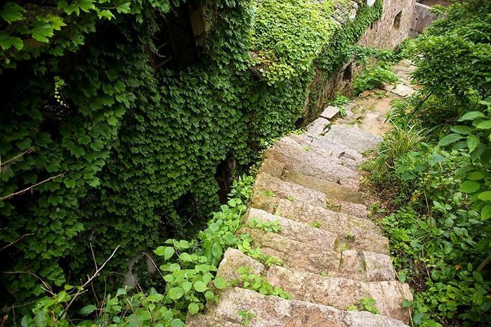 Деревня Хоутоуван: Дом плюща, Китай