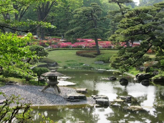 chiba-кольцо-в-центре-токио-175010дв и сад (700x525, 148Kb)