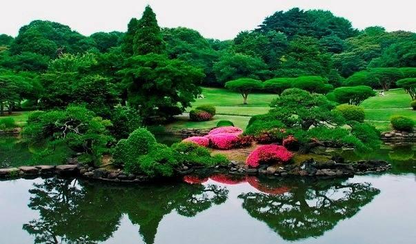 nacionalnij-sad-shinjuku-gyoen-yaponiyaсиндзуку парк (603x354, 50Kb)