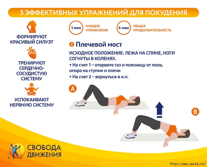 Упражнения Для Похудения Начальная Стадия.