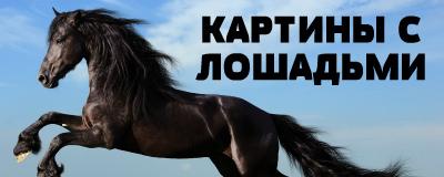 алмазная вышивка лошади