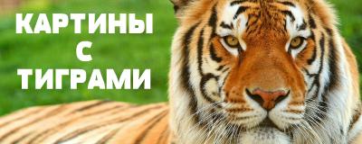 алмазная вышивка тигры