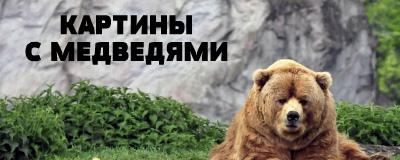 алмазная вышивка медведи